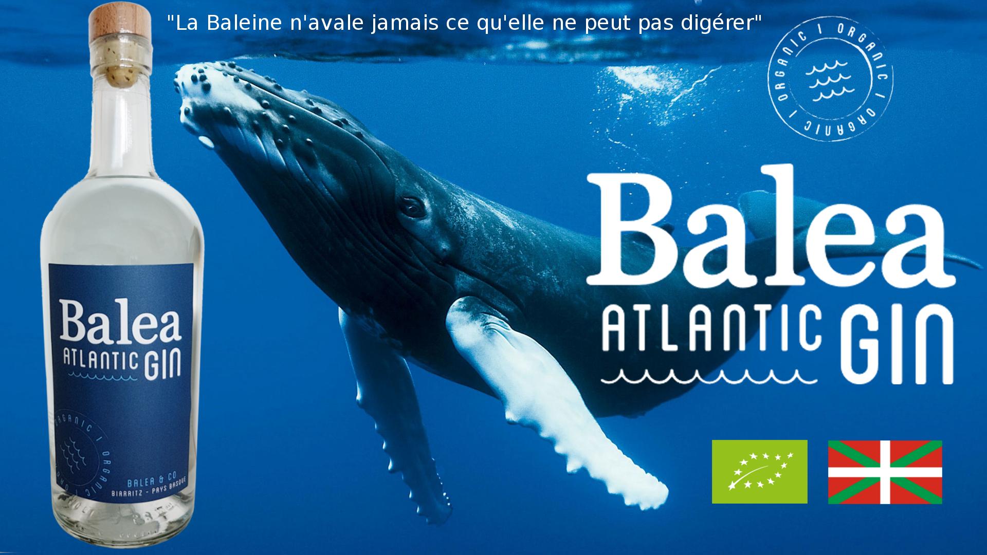L'océan et la Baleine, source d'inspiration.